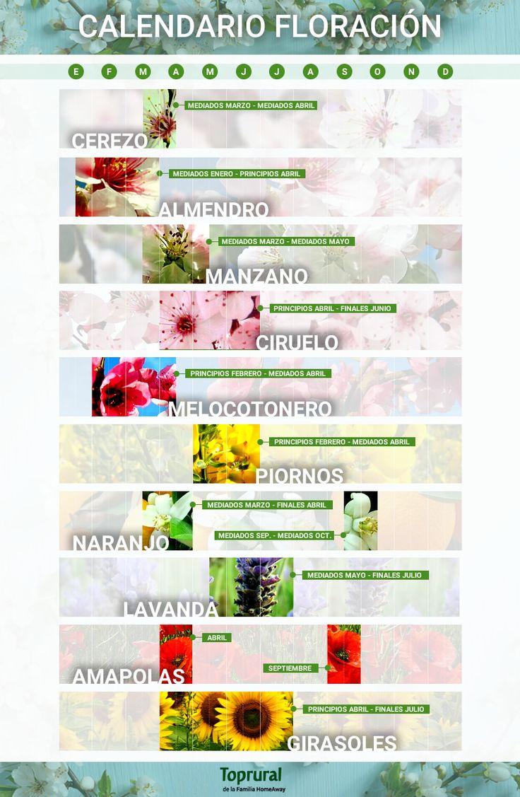 Calendario de floración