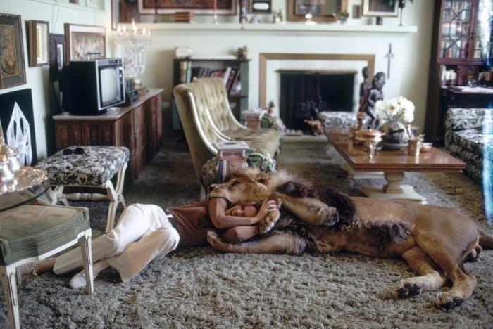 Фотографии семьи, у которой дома жил лев