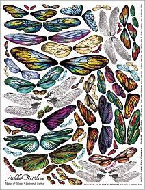 Alas de mariposa                                                                                                                                                                                 More