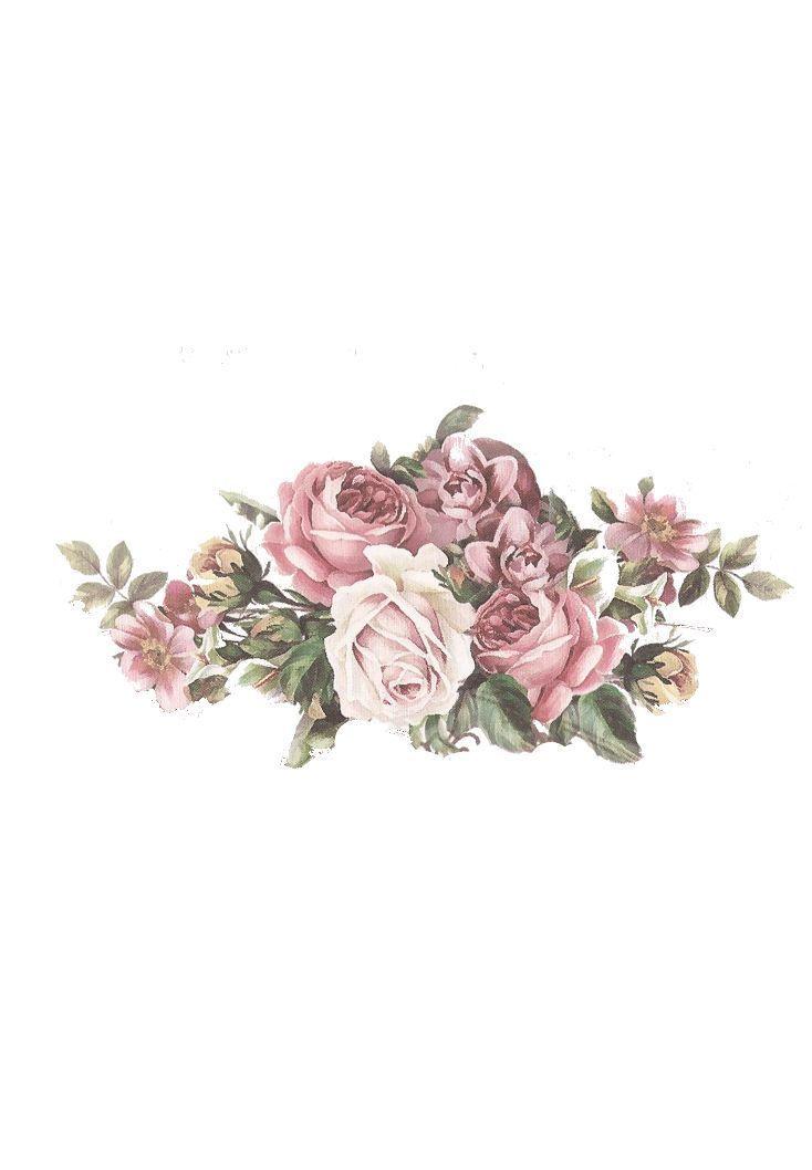 Vintazhnyj Cvetochnyj Klipart Pinterest Flower 1 734 X 1058 Floral Drawing Flower Drawing Flower Painting