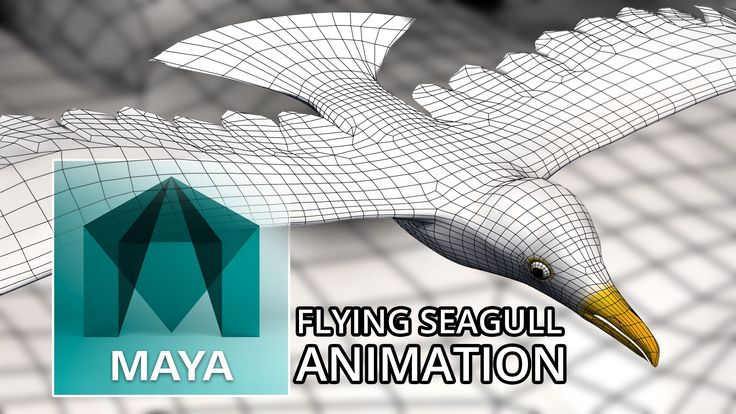 Autodesk Maya 2016 - Flying Seagull Animation - 3D Model (Free 3D Model ...