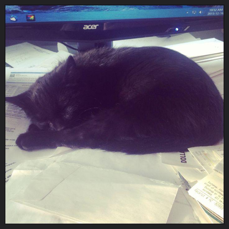 Office Helper.