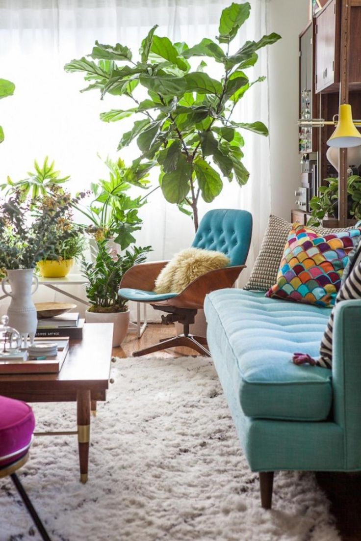741 best living room images on pinterest living room designs beautiful color small living room design with blue sofa superb ideas for small living room design