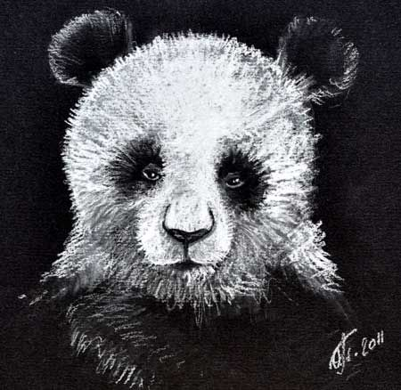 Рисунок панды пастелью