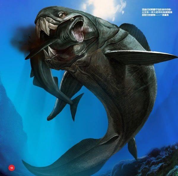 17 Best ideas about Dunkleosteus on Pinterest | Megalodon ...