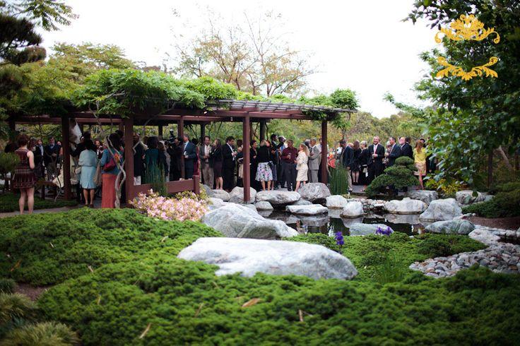 10 best venues japanese friendship garden images on for Japanese friendship garden san jose koi fish