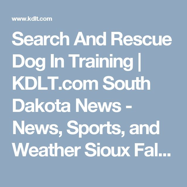 Search And Rescue Dog Training South Carolina