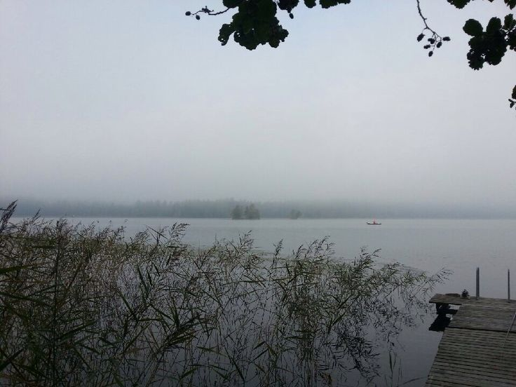 Foggy, grey autumn in Finland. Photo by Pirjo Salo.