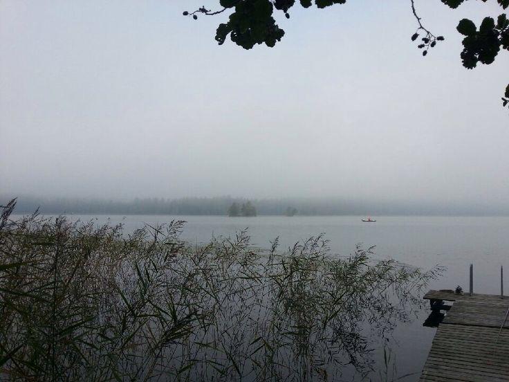 Foggy, grey autumn in Finland. Photo by Pirjo Salo.