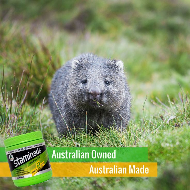 Did you know Staminade is Australian Made by an Australian owned, family business? It's a fact we are proud of!   #staminade #australian #australianowned #australianmade