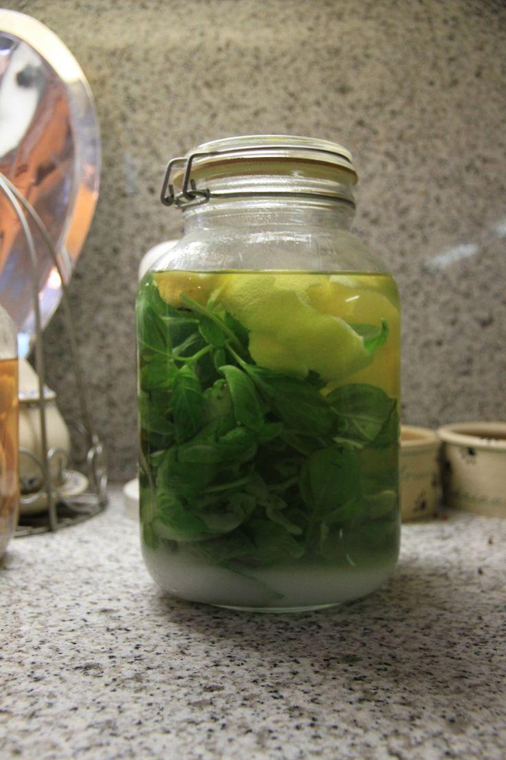 """Zelf likeur maken, basilicumlikeur. Nooit had ik hier van gehoord, maar volgens het boek """"La Dolce Vita"""" (Tessa Kiros) is het heel erg lekker, dus eens geprobeerd. Je verdunt een liter alcohol van 96% met een liter water en voegt de ..."""