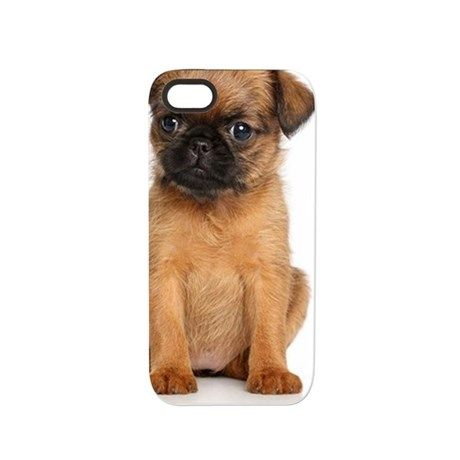 Griffon Bruxellois Puppy iPhone 5/5S Tough Case