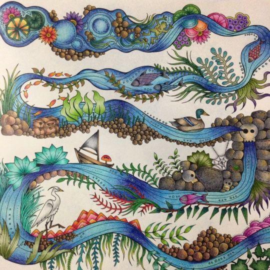 Johanna Basford Coloring BooksAdult