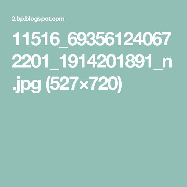 11516_693561240672201_1914201891_n.jpg (527×720)