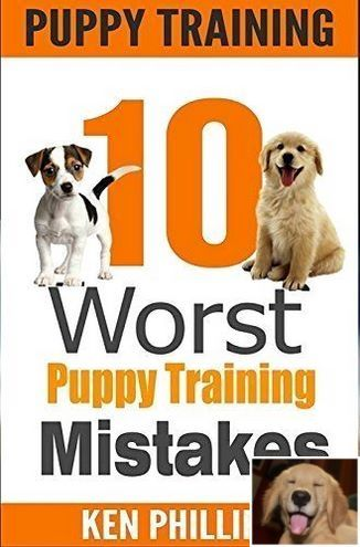 Stop Dog Jumping And How To Crate Train A Puppy Check Pin For
