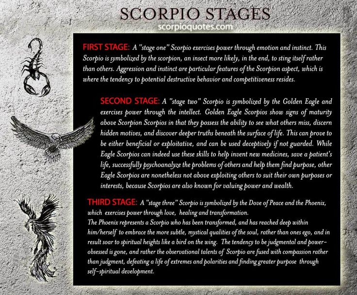 Scorpio Evolution: From Scorpion to Phoenix    The Three Stages of the Scorpio Zodiac: the Scorpion,...