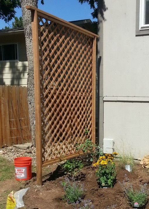 $50 Garden Trellis Backyard Privacy Shield DIY. I need about 5 of these to secure along the chainlink to decrease the view of the junky yard next door. Plant arbor Volta in between the trellis.