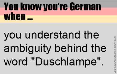 """Du weißt, dass du deutsch bist, wenn …du die Zweideutigkeit erkennst, die hinter dem Wort """"Duschlampe"""" steckt.(Submitted by anonymous)"""