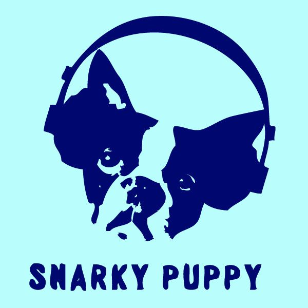 snarky puppy - Google Search