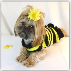 Find this free crochet dog sweater pattern at www.crochetguru.com