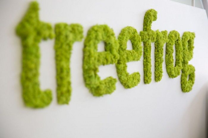 Live moss signage @ Treefrogs New Newmarket Offices