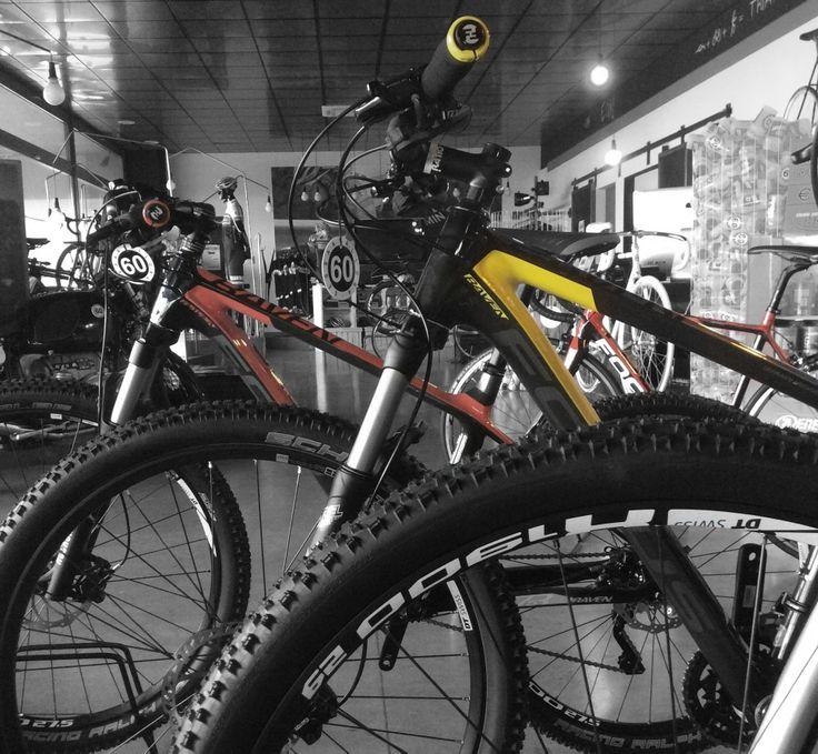 Rivenditori Focus Bike Italia  #mountainbike #mtb #raven