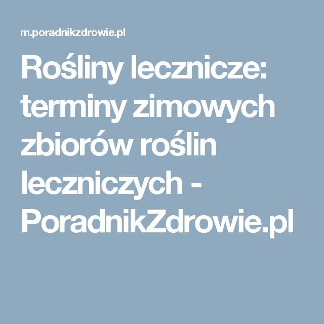 Rośliny lecznicze: terminy zimowych zbiorów roślin leczniczych - PoradnikZdrowie.pl