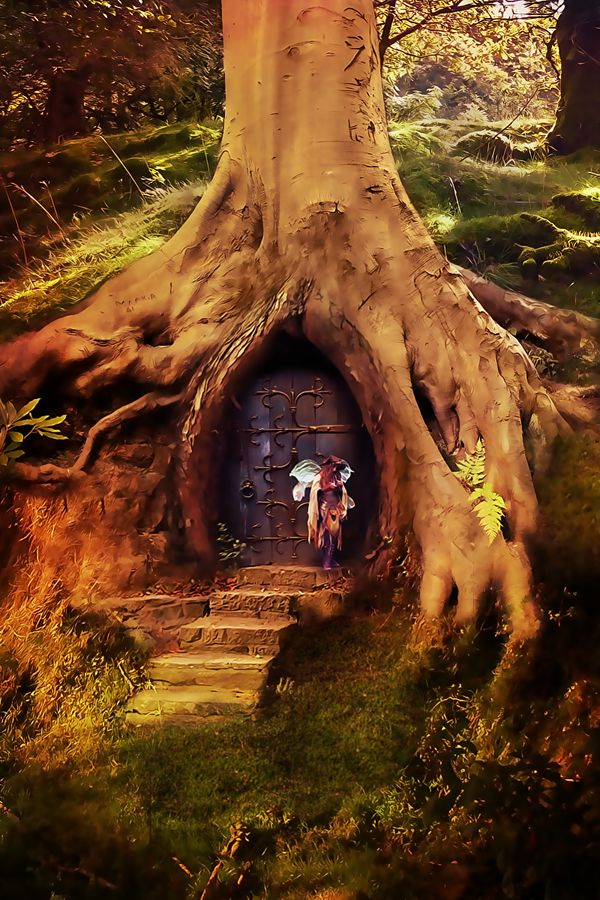 Tree house -- this is JUST where I would like to be right now....