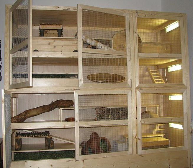 Degu Cages