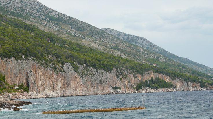 Wyspa Hvar znajdująca się w środkowej części Dalmacji podzielona jest jakby na dwie cześci, północną stosunkowo płaską i zamieszkałą, oraz południową - górzystą, niemal niedostępną.  więcej: http://www.chorwacja24.info/zdjecia/hvar #hvar #dalmacja #chorwacja #croatia