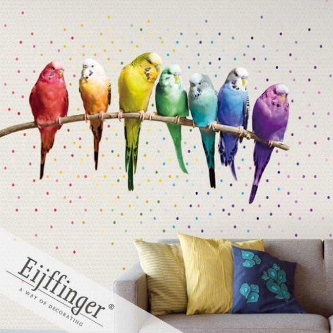 Eijffinger Wallpower Wonders Mural – Rainbow Budgies  Wallpapershop / Murrays Interiors