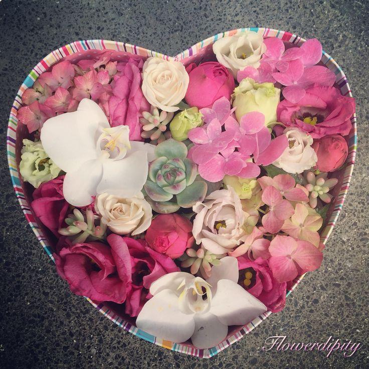 Happy heart #flowerdipity #happy #flowers #heart #orchids #echeveria