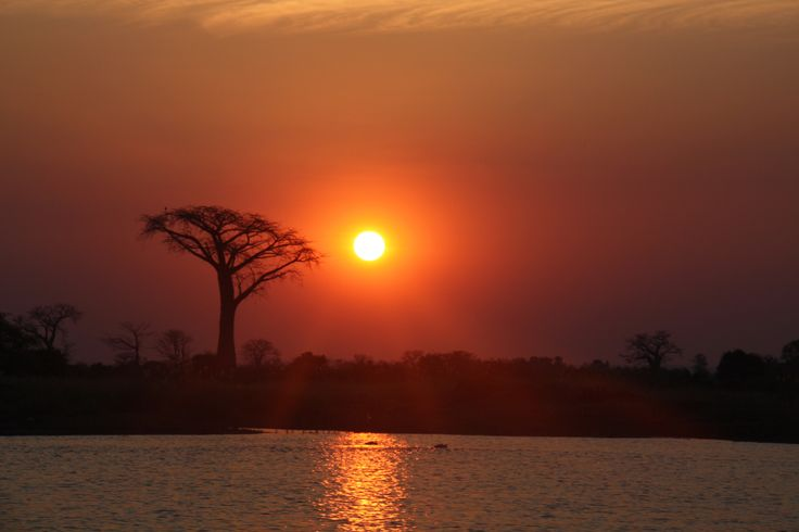 ☀️ #Liwonde #National #Park #Malawi