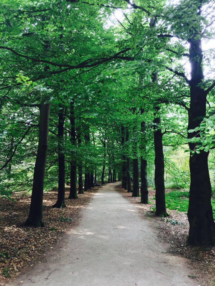 best 25+ kies ideas on pinterest | kies garten, kiesgarten and, Gartenarbeit ideen