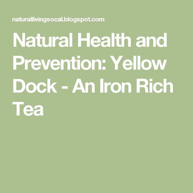 Natural Health and Prevention: Yellow Dock - An Iron Rich Tea