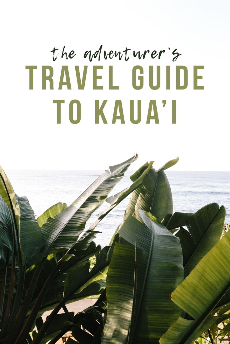 The Adventurer's Travel Guide To Kaua'i | Travel Blogger's Guide To Kaua'i | Things To Do in Kauai, Hawaii | Must See Things in Kauai, Hawaii via @elanaloo + elanaloo.com