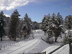 La Sila, Calabria - Wikipedia, the free encyclopedia
