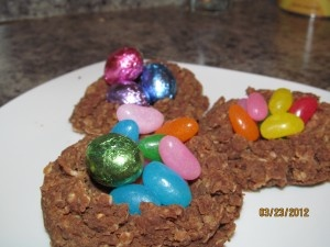 Chocolate Candy Nests using Reliv Now for Kids!