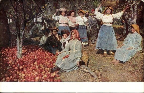 Postcard Griechische Frauen in Volkstracht bei der Apfelernte-Κέρκυρα