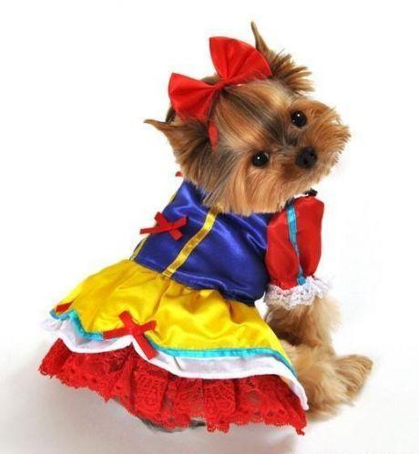 Enchanted Snow Princess Halloween Dog Costume - Halloween Dog Outfits