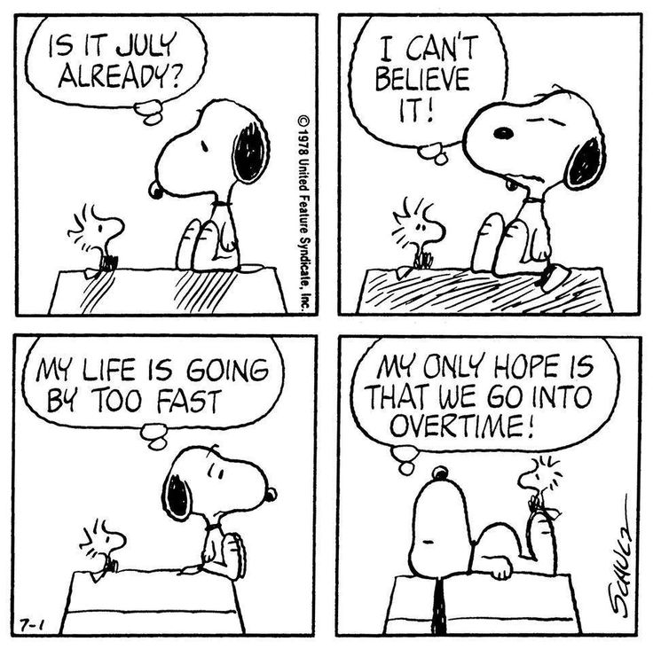 #Snoopy #Peanuts #Cartoon #Strips #Humor #Jokes