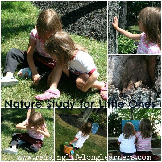 nature study for little ones - preschool, kindergarten - great for homeschooling families.