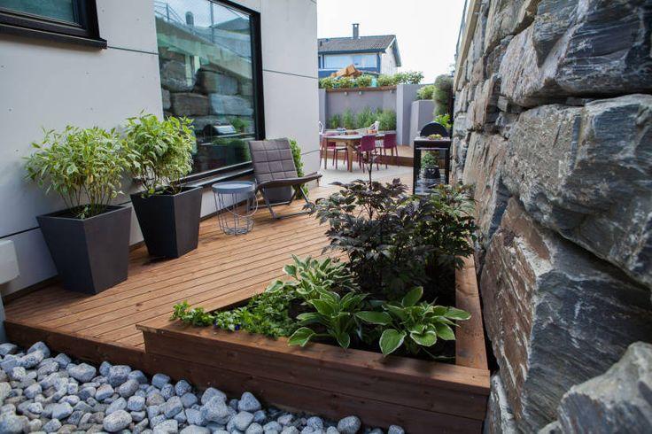 Slik forvandlet «Tid for hjem» steinørkenen til en hage - TV2.no