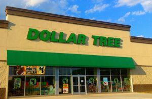 Dollar Tree is an American Discount variety store that is selling many kinds of the helping items to the people based on all parts of the country. The company is the component of the Fortune 500. The headquarter of the from E-Guides Service http://www.eguidesservice.com/www-paperlessemployee-com-dollartree-access-dollar-tree-to-create-an-account-online/