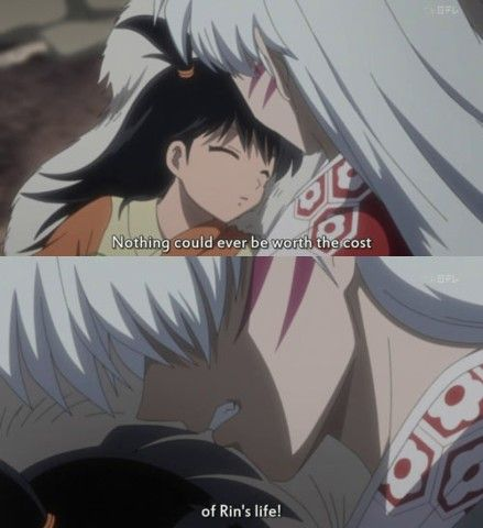 I know this that sesshomaru never likes a human but i know that he have a big heart for Rin.