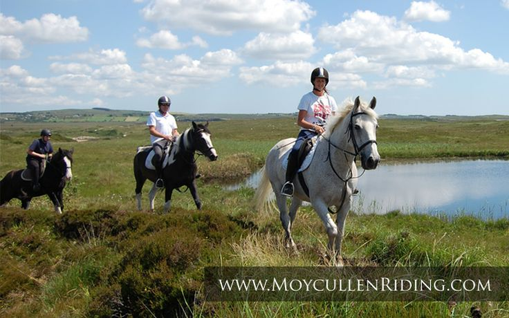 Horse riding lessons and trekking in the beautiful Connemara countryside. with Moycullen Riding Centre