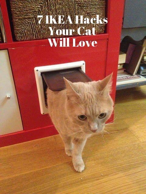 18 besten Helpful Information Bilder auf Pinterest ...