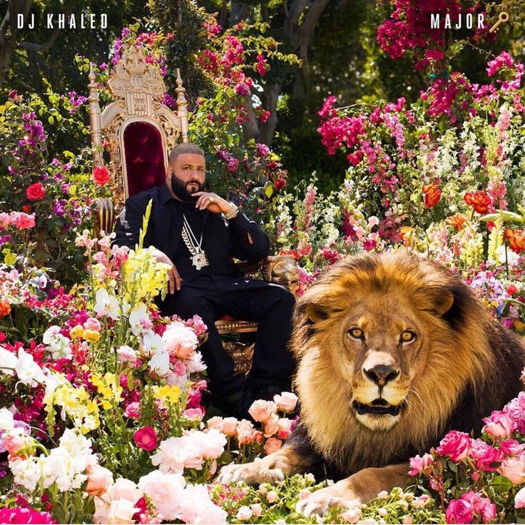 "DJ Khaled reveals his ""Major Key"" album cover. - Eye Blog About.....Nothin'"
