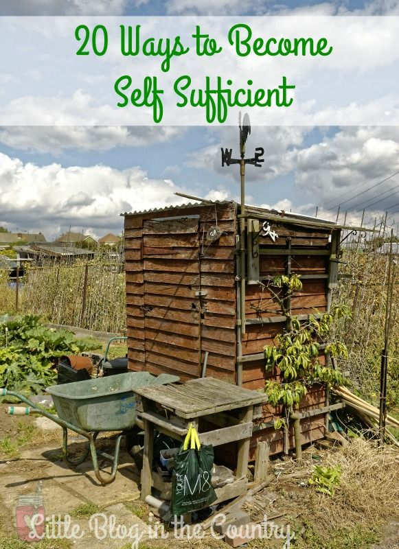 Looking for ways to become self sufficient? Here are 20 easy steps you can take today.