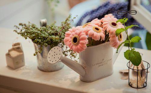 Imagen de flowers, watering can, gerbera daisy and pink